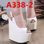 170462a
